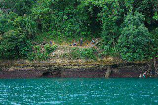 Pantai Tamban merupakan sebuah daerah pantai yang terletak di pesisir selatan tepi Samude Pantai Tamban Sendang Biru Malang Jawa Timur