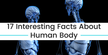 17 Interesting Facts About Human Body