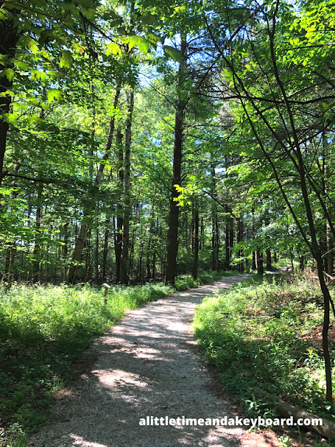 Starting on a lovely shaded trail at Kohler-Andrae State Park.