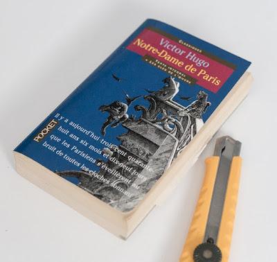Notre-Dame-de-Paris Book | Victor Hugo