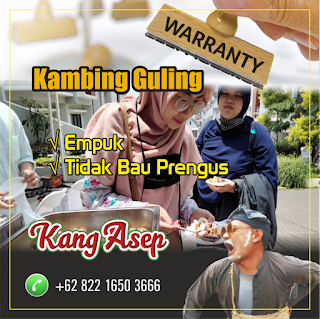 Delivery Kambing Guling Bandung Bebas Ongkir, kambing guling bandung, delivery kambing guling bandung, kambing guling,