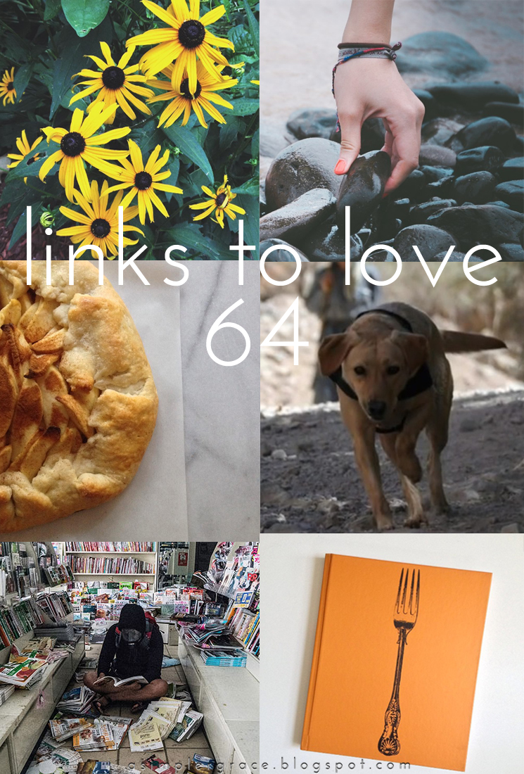 A post featuring my favorite reads from the week.  #linkstolove #fridayfavorites - Links to Love | 64 - A Simpler Grace