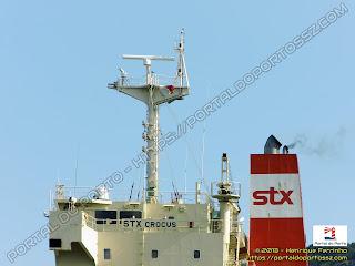 STX Crocus