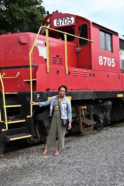 Take a Train Ride through the Foothills of Northern Georgia: Blue Ridge Scenic Railway