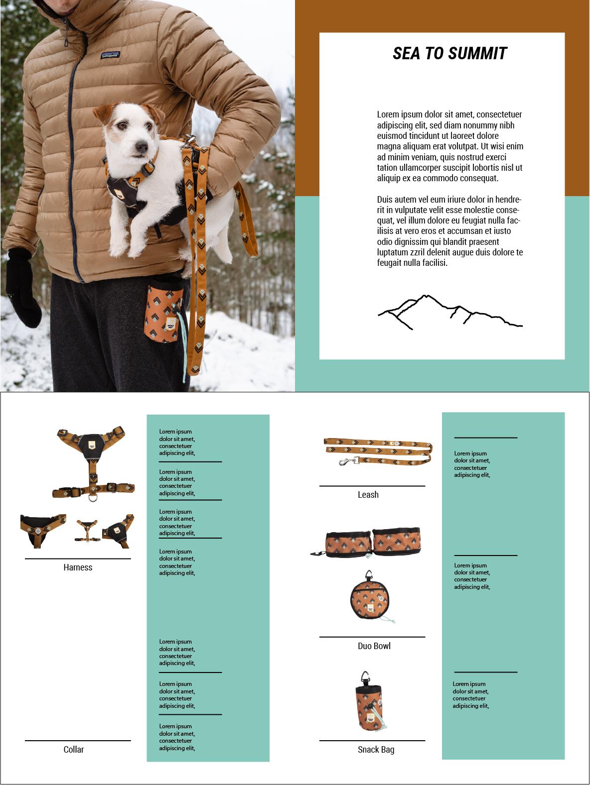 Katalogin layoutluonnos