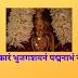 शान्ताकारं भुजगशयनं पद्मनाभं सुरेशम् | Shantakaram Bhujagshayanam |
