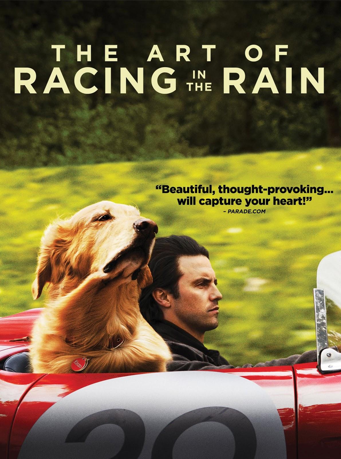 Download Film The Art of Racing in the Rain (2019)
