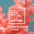 Pantone Colour Living Coral: Home Decor Inspirations