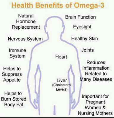 Maksud Omega 3, apa itu omega 3, manfaat omega 3, OMEGA GUARD SHAKLEE, omega guard, manfaat omega guard  shaklee, manfaat omega 3