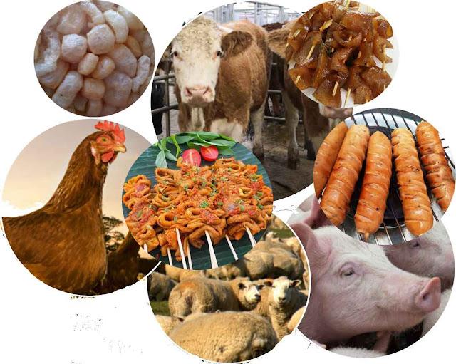 Komponen-komponen dimana tidak layak dimakan dapat diproses dan dimanfaatkan menjadi produk bernilai ekonomi cukup tinggi. Beberapa komponen non karkas yang pemanfaatannya diolah dengan menggunakan teknologi canggih dapat memberikan keuntungan finansial besar.
