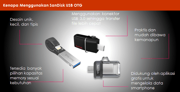 SanDisk USB OTG Dual Flash Drive