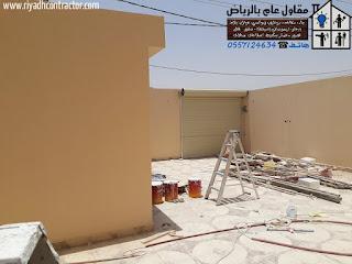 دهانات خارجية للفلل في الرياض
