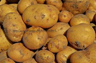 Potatoes-आलू