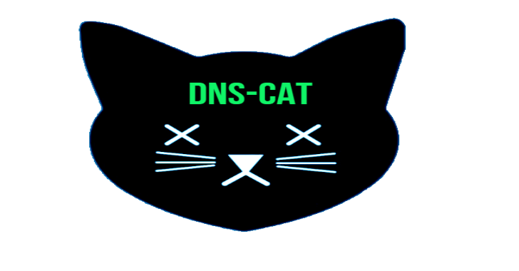 DNS-Black-Cat(DBC) : Multi Platform Toolkit For An Interactive DNS Shell Commands Exfiltration, By Using DNS-Cat You Will Be Able To Execute System Commands In Shell Mode Over DNS Protocol