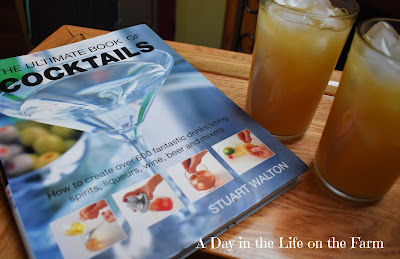 Cocktail Cookbook and Cocktails