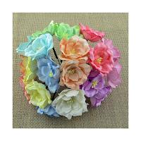 http://www.artimeno.pl/-magnolias/7458-wild-orchid-crafts-magnolias-magnolie-pastelowe-10szt.html