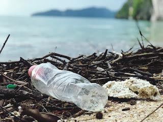 plastic bottle on beach. Photo from Catherine Sheila, Pexels