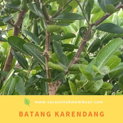 Batang Karendang