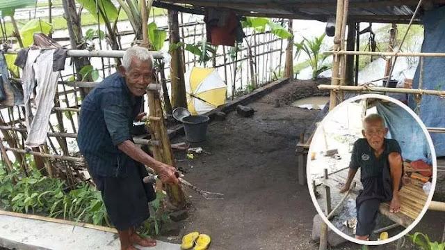 Sungguh Pilu!!! Kisah Kakek Hidup di Tengah Sawah, Pilih Menyendiri karena Sering Diguyur Air Anaknya