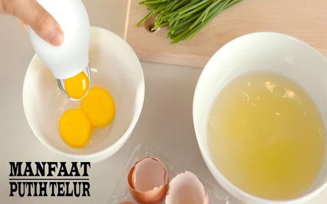 Putih Telur dengan 12 Manfaatnya