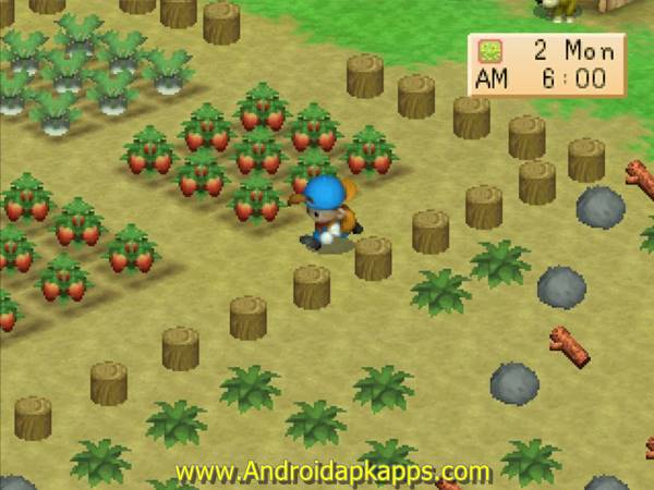 Game Harvest Moon: Back to Nature Android (Bahasa Indonesia) Terbaru 2015 Gratis Free Download