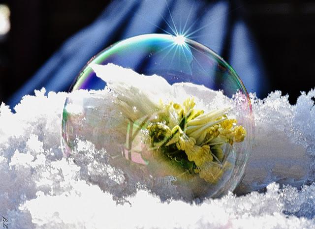 Macrobild im Weilburger Tageblatt,Seifenblase im Winter
