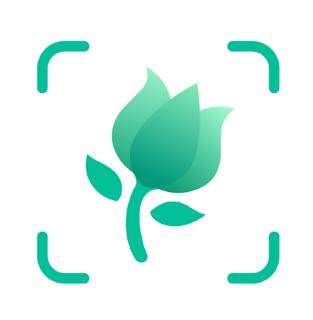 تطبيق picture this دليلك للتعرف على النباتات