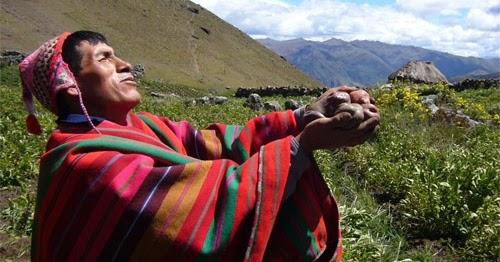 Aprueban norma que prohibe ingreso de transgénicos al Perú ...