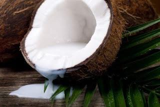 buah kelapa dan minyak kelapa