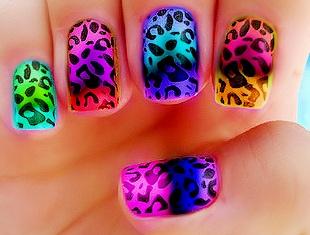 Foto de uñas con diseño de leopardo de distintos colores