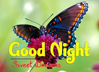 Latest Beautiful Good Night Wallpaper Free Download %2B54