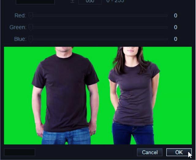 convert normal video to green screen