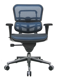 Eurotech Seating Ergohuman Chair at OfficeAnything.com