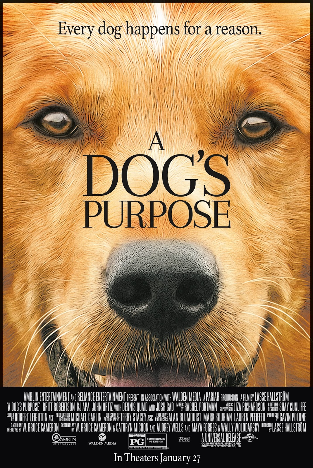A Dog S Purpose Movie Animal Abuse Video