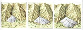 Desarrollo de un cono de deyección