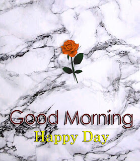 New Good Morning 4k Full HD Images Download For Daily%2B106