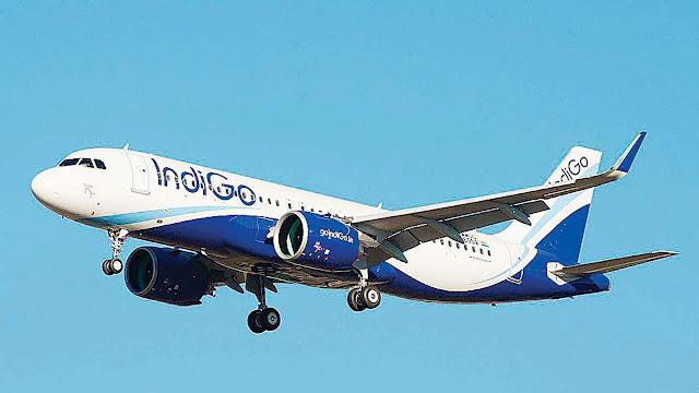 2. Indigo Airlines (India)