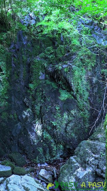Cascada seca de la Salgueira