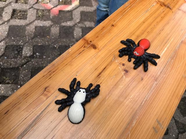 Wochenende in Bildern: Gummispinnen