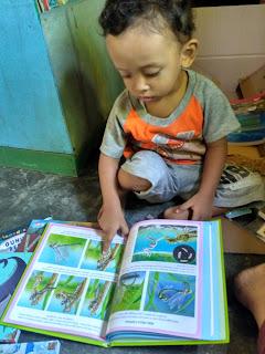 Tahapan Belajar Membaca Anak Usia Dini