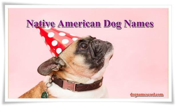 Native American dog names