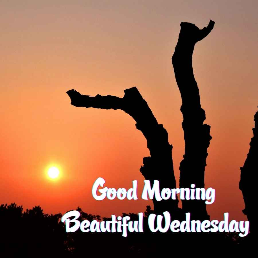 good morning happy wednesday images hd