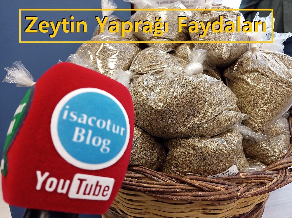 Başkent Market Kızılay Zeytin yaprağının faydaları