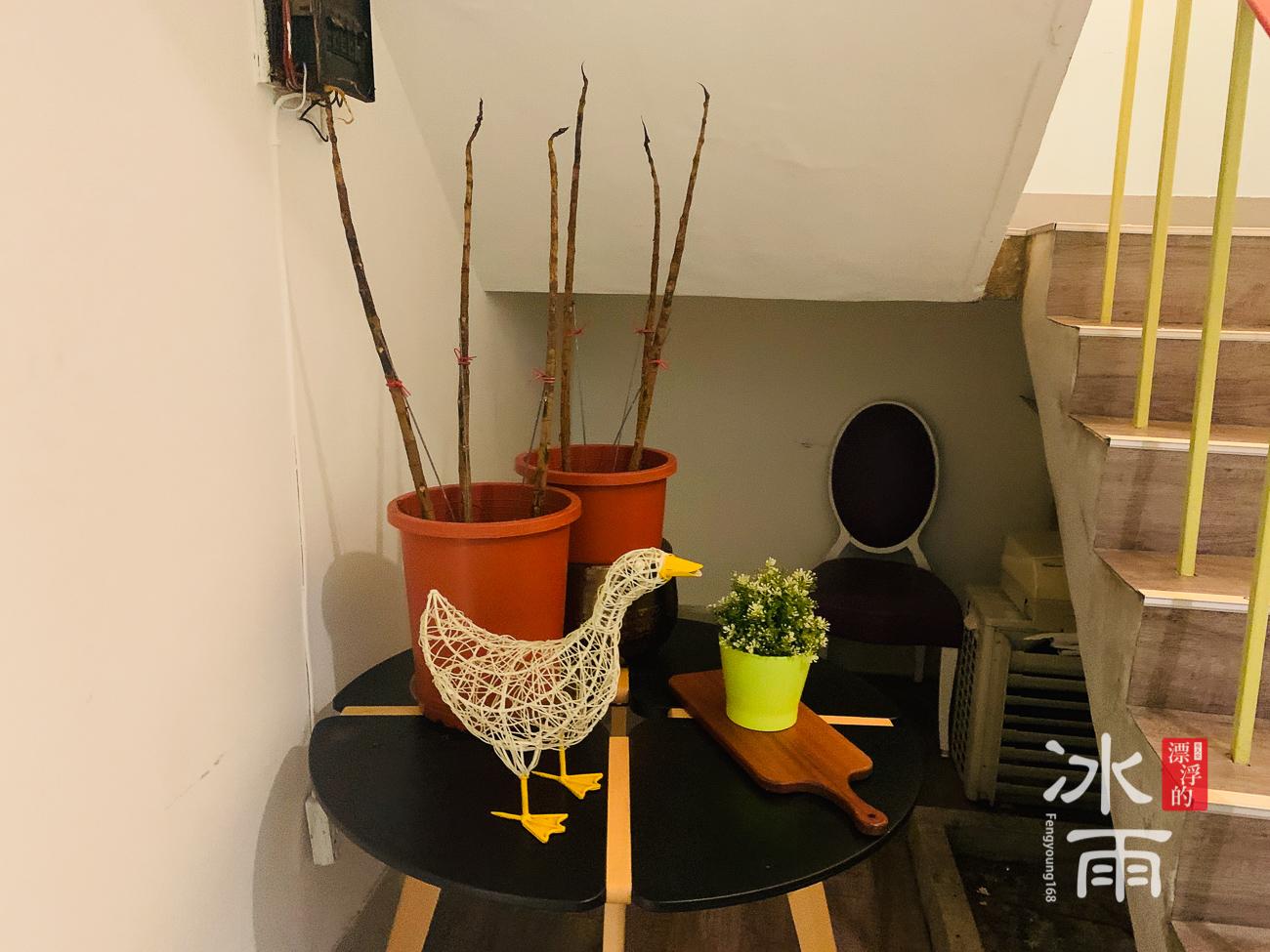草蔬宴Cheer Su|地下室擺設
