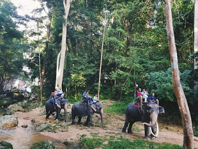 Koh Samui Elephant Trekking trip at Namuang Waterfall No.1 Camp. Enjoy elephant riding
