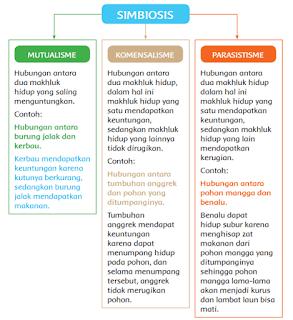 SIMBIOSIS mutualisme komensalisme dan parasisitisme www.simplenews.me