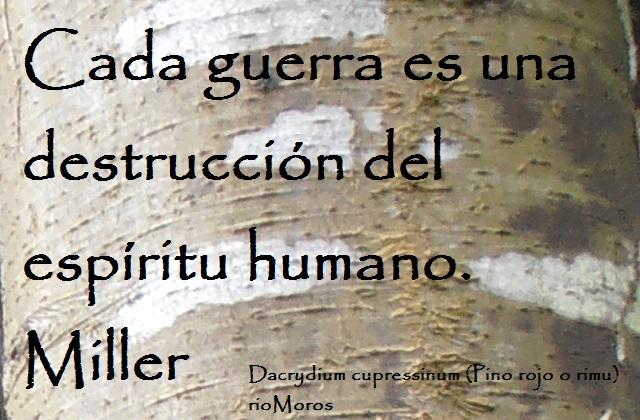 Cada guerra es una destrucción del espíritu humano Miller