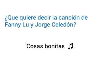 Significado de la canción Cosas Bonitas Fanny Lu Jorge Celedón.