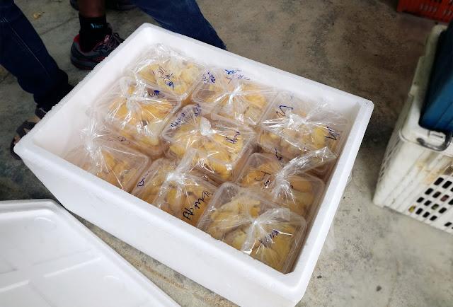 Thailand yala betong food betong durian