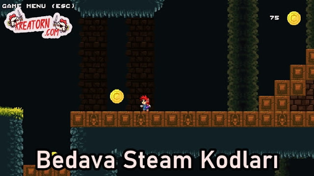 Researcher-Bedava-Steam-Kodlari